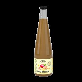 Jabolčni sok z ingverjem 250ml